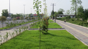 پروژه پیاده راه میدان گیل تا دانشگاه گیلان